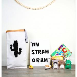 paperbag-cactus
